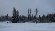 sneženie - Štrbské pleso