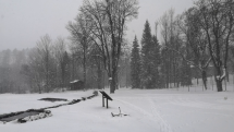 Biela zima ❄