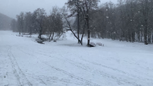 pd snežik