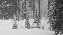 Štrbské pleso - sneženie