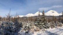 Slnečné ráno pod Vysokými Tatrami