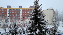 Sneženie - 10.2.2021