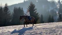 Jazda na koni zasnezenou krajinou
