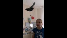 Vtáčik letáčik