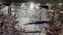 Vodopád pri Smolenickom zamku