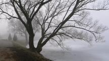 Jazero v Stropkovev hmle
