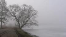 Jazero v Stropkove v hmle
