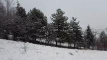 Sneženie na Liptove