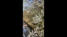 Most nad potokom Mláka
