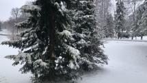 utorkové ráno 6.4.2021 tatranská lomnica