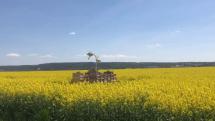 Slovensko sa oblieka do žlta