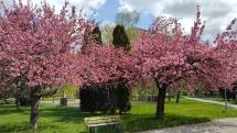Počasie v Košiciach