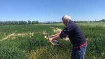 drony v poľnohospodárstve