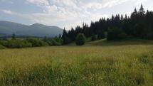 Chamkova stodola Šumiac