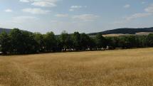Okolie Bukovej - Malé Karpaty