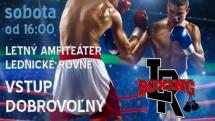 Zápasy v boxe