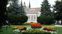 Rozkvitnuté Košice
