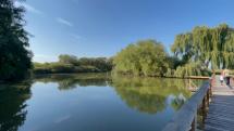 Ruskovský rybník, okr. Trebišov