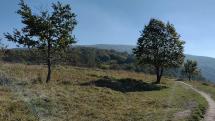 Pohľad na Devínsku Kobylu a hrad Devín