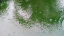 Déšť dorazil do východních Čech
