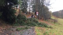 Odstranění stromu ze silnice v Srní na Šumavě