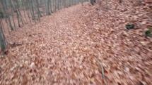 les- chôdza