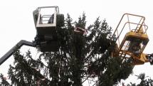 Zdobení vánočního stromu na Staroměstském náměstí v Praze