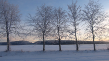 Při východu Slunce, Bukovinka na Blanensku