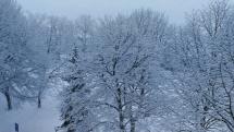 Biele ráno v Stupave