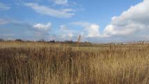Počasie na Záhorí - Stupava