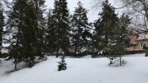 Aktuálne počasie v Levoči.