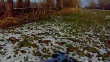 Krtásne počasie v Križovanoch nad Dudváhom okr. Trnava dnes, slnečno, aj zamračené, striedavo,
