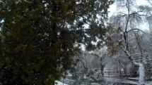 Trnava dnes , sneží, ale topí sa to.