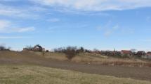 Prebúdzajúca sa jar na poliach západného Slovenska - Záhorie, Stupava