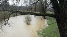 Rieka Cirocha