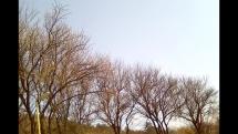 Pekné počasie