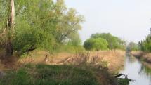 Riečka Malina - jedno zo slepých ramien Moravy, Stupava - Záhorie