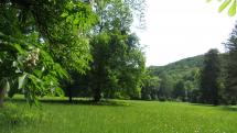 Lúky a lesy na Záhorí - Stupava