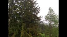 Dážď v Liptovskom Jáne