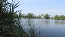 Aj dnes krásne na jazere pri Vysokej na Morave