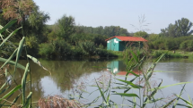 Pri rybníku v Stupave