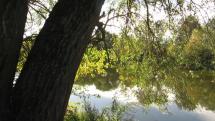 Záhorie - rieka Morava Devínske jazero