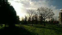 Počasie v Shannone, Irsko