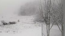 Sneženie