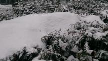 Ranné sneženie v Sliači