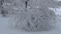 Počasie v ČR - sneh v Prahe