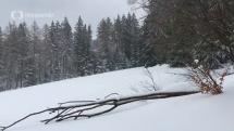 Počasie v ČR - Šumava Sruby