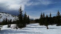 Hrebeň Nízkych Tatier, pri Lenivej