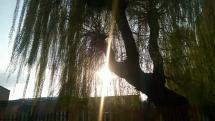 Zapadá slnko