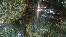 Krásny pohľad na park v Bardejove